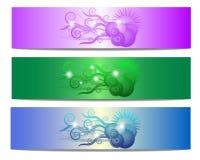 Bandera floral colorida del vector de la dimensión de una variable Fotografía de archivo