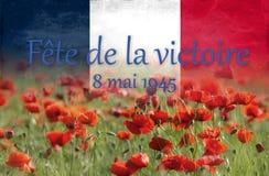 Bandera francesa en el fondo de amapolas fotografía de archivo libre de regalías