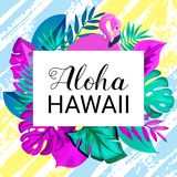 Bandera gteeting de HAWAII de la HAWAIANA Hojas de palma tropicales y fondo dibujado rosado del cepillo del flamenco a mano Imagen de archivo
