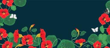 Bandera horizontal con las flores y las mariposas de la capuchina Modelo del vector libre illustration