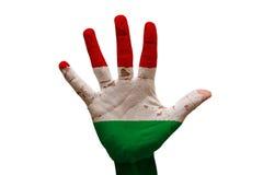 bandera Hungría de la palma Fotos de archivo libres de regalías