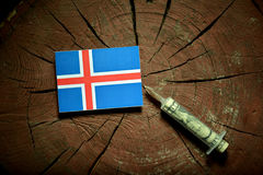 Bandera islandesa en un tocón con la jeringuilla que inyecta el dinero fotos de archivo libres de regalías