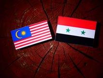 Bandera malasia con la bandera siria en un tocón de árbol Fotos de archivo libres de regalías