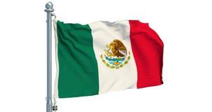 Bandera mexicana que agita en el fondo blanco, animación representación 3d ilustración del vector