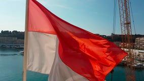 Bandera nacional de Mónaco almacen de metraje de vídeo