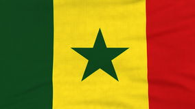 Bandera nacional del vuelo de Senegal en el viento ilustración del vector