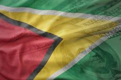 bandera nacional que agita colorida de Guyana en un fondo del dinero del dólar Concepto de las finanzas foto de archivo