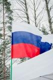 Bandera nacional que agita de Rusia en un fondo de la naturaleza foto de archivo libre de regalías