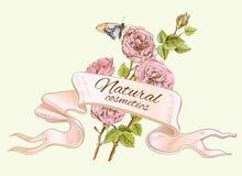 Bandera natural colorida de Rose ilustración del vector
