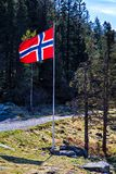 Bandera noruega en asta de bandera en el camino en bosque Imágenes de archivo libres de regalías