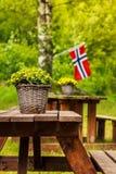 Bandera noruega y sitio verde de la comida campestre Imagen de archivo libre de regalías