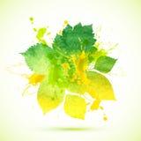 Bandera pintada acuarela verde del follaje del verano stock de ilustración