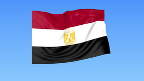 Bandera que agita de Egipto, lazo inconsútil Tamaño exacto, fondo azul Parte de todos los países fijados 4K ProRes con alfa stock de ilustración