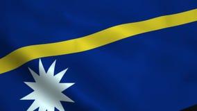 Bandera realista de Nauru libre illustration