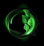 Bandera redonda con las hojas verdes libre illustration
