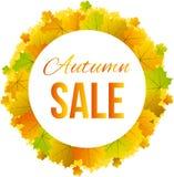 Bandera redonda de la frontera de las hojas de arce coloridas para Autumn Sale Imágenes de archivo libres de regalías