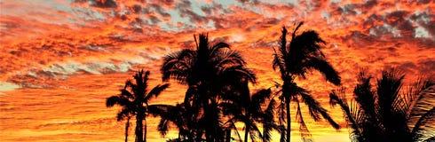 Bandera roja de la puesta del sol de Manzanillo Imagen de archivo libre de regalías