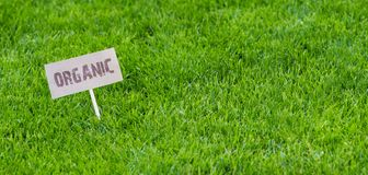 Bandera sana fresca de la primavera con la muestra orgánica foto de archivo libre de regalías