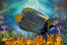 Bandera subacuática con los pescados rayados azules Foto de archivo