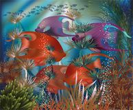 Bandera subacuática con los pescados tropicales, vector Foto de archivo libre de regalías