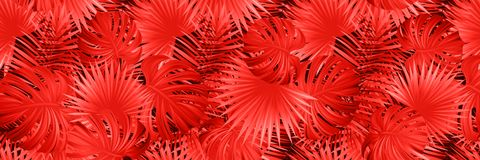 Bandera tropical ex?tica Follaje rojo del vector Colores brillantes Ejemplo tropical mágico Antecedentes de la selva Hermoso libre illustration