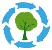 Bandera verde del árbol de Eco libre illustration
