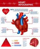 Bandera vertical con el corazón Infographic, estadística libre illustration