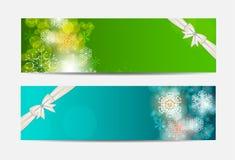 Bandera y tarjeta del sitio web de los copos de nieve de la Navidad Foto de archivo