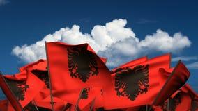 Banderas albanesas que agitan ilustración del vector