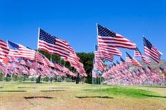 Banderas americanas en un campo Imagen de archivo libre de regalías