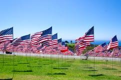 Banderas americanas en un campo Imágenes de archivo libres de regalías