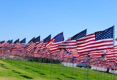 Banderas americanas en un campo Fotografía de archivo