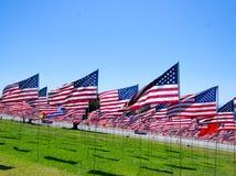 Banderas americanas en un campo Foto de archivo libre de regalías