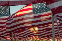 Banderas americanas que agitan en la puesta del sol Imagenes de archivo