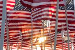 Banderas americanas que agitan en la puesta del sol Fotografía de archivo libre de regalías