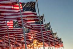 Banderas americanas que agitan en la puesta del sol Fotografía de archivo