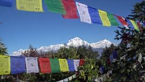 Banderas budistas del rezo que cuelgan a lo largo de caminar las trayectorias en Nepal El emigrar en el Himalaya almacen de metraje de vídeo