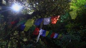 Banderas budistas del rezo que cuelgan a lo largo de caminar las trayectorias en Nepal El emigrar en el Himalaya almacen de video