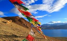 Banderas budistas en la montaña cerca de la TSO Moriri, Ladakh del lago, Foto de archivo libre de regalías