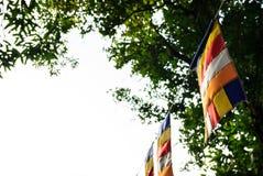 Banderas budistas en templo budista con el espacio de la copia Símbolo de la adoración, creencia, concepto religioso cultural Imagenes de archivo