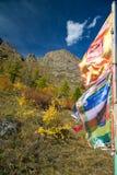 Banderas budistas que agitan en el viento Imágenes de archivo libres de regalías