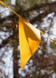 Banderas coloreadas en el otoño de la naturaleza Fotografía de archivo libre de regalías