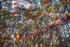 Banderas coloridas del rezo que agitan Foto de archivo libre de regalías