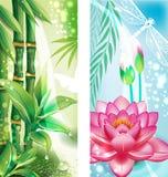 Banderas con el bambú y el loto Foto de archivo libre de regalías