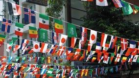 Banderas de diversas naciones en una ubicación Banderas de los estados que agitan en el viento en un día soleado en verano almacen de video