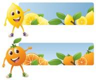 Banderas de la fruta cítrica Imagen de archivo