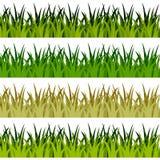 Banderas de la hierba verde