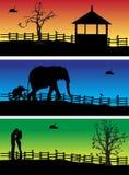 Banderas de la naturaleza, animales Imagenes de archivo