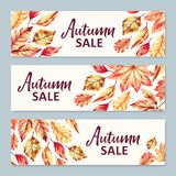 Banderas de la venta del otoño Fotos de archivo libres de regalías