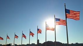 Banderas de los Estados Unidos almacen de video
